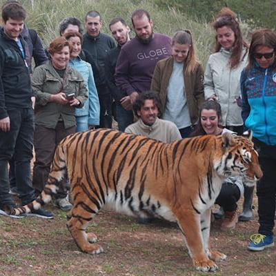 PRO.ME.S.A. Protección Medio Ambiental, Sociocultural y Animal