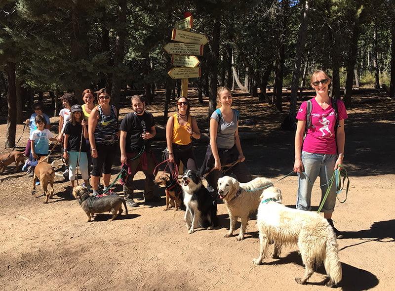 Kontigo, Senderismo con perros