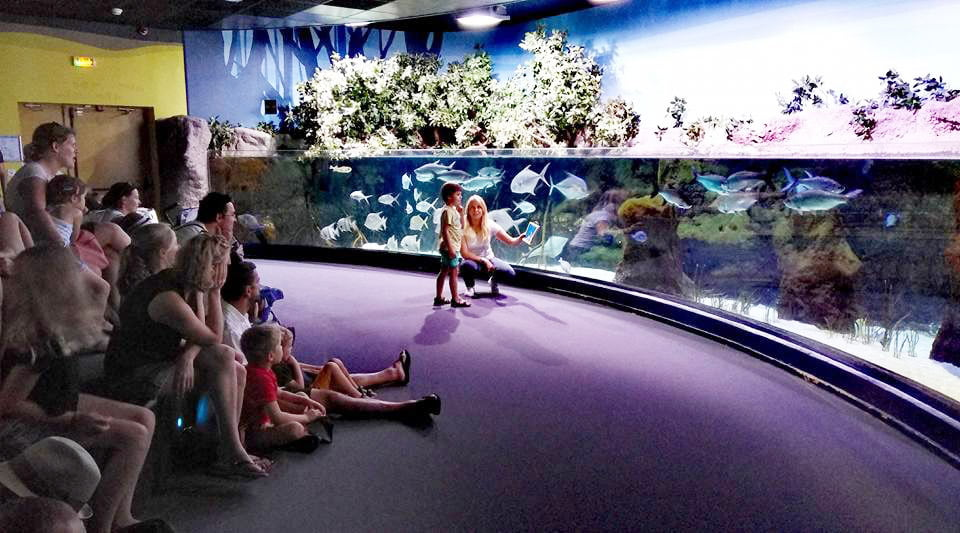 Kontigo, actividades. Visitas guiadas en núcleos zoológicos
