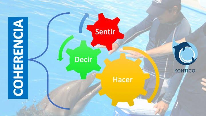 Kontigo-Gráfico coherencia en el trabajo con delfines y animales