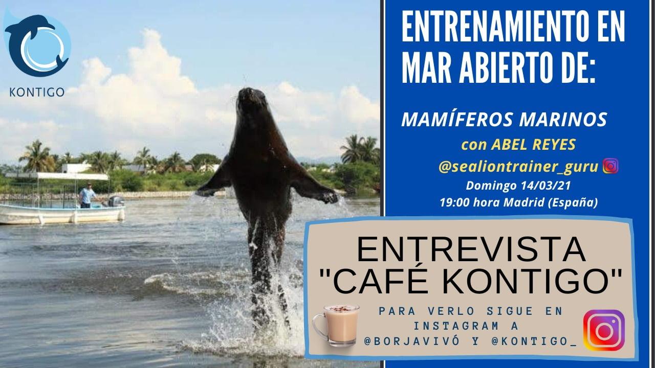 Café Kontigo