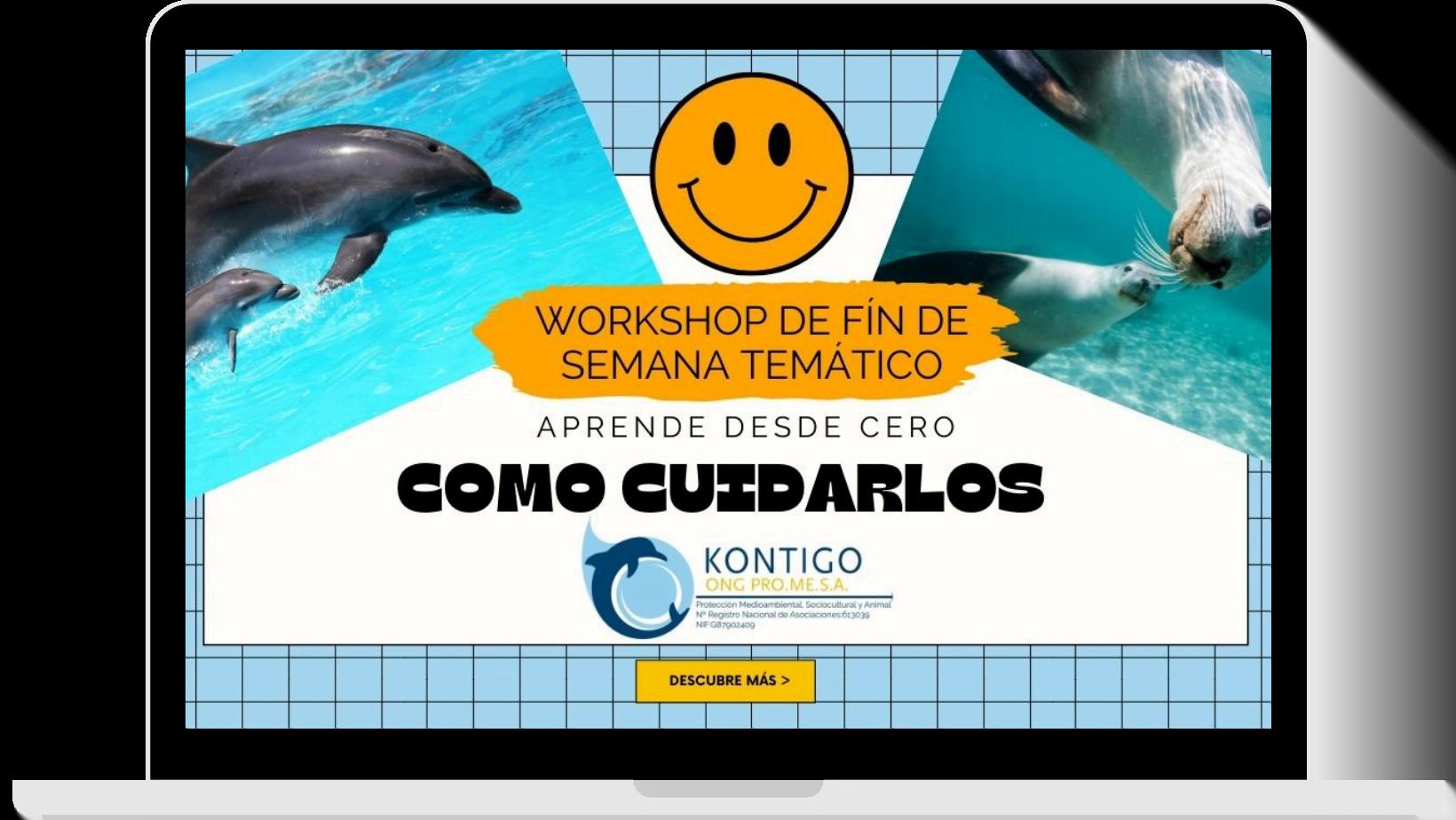 Workshop, cómo cuidar delfines y leones marinos