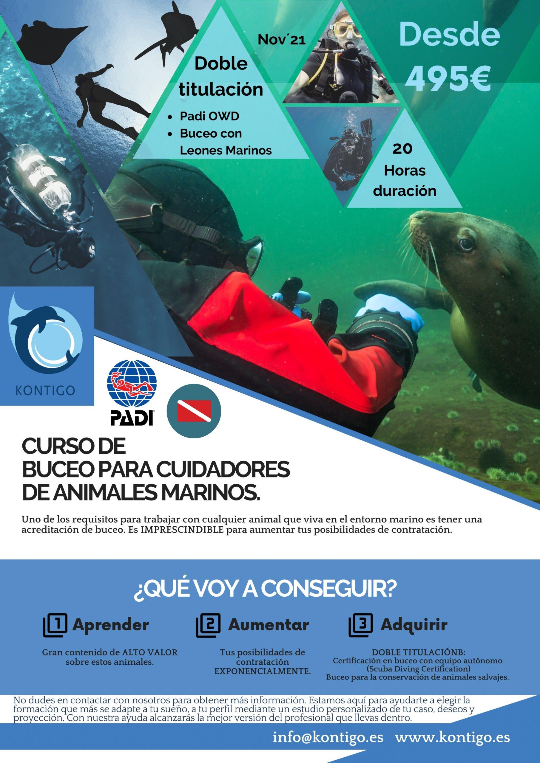 Buceo con animales marinos